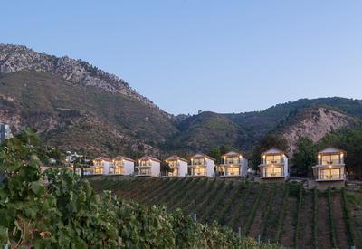 thumb_cyprus-gillham-vineyard-hotel