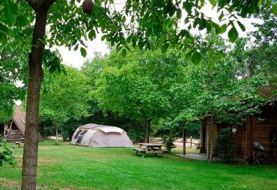 thumb_nederland-camping-intniet
