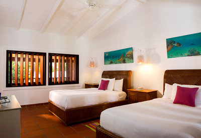 thumb_grenadines-islands-palm-island-resort
