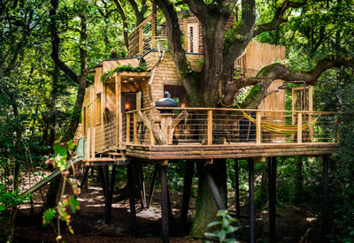 thumb_verenigd-koninkrijk-the-woodsmans-treehouse