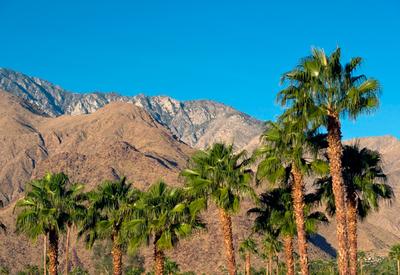 thumb_californie-desert-sun-resort